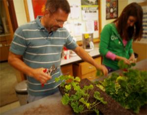 Gardener Winston-Salem
